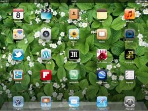 Accueil de l'iPad